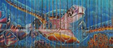 Sea turtle graffiti