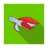 Sea turtle icon in flat style isolated on white background. Sea animals symbol stock vector illustration. vector illustration