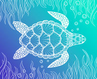 Sea turtle in line art style. Hand drawn vector illustration. Design for coloring book. Set of ocean elements. Sea turtle in line art style. Hand drawn vector stock illustration