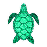 Sea turtle in line art style. Hand drawn vector illustration. Set of ocean elements. Sea turtle in line art style. Hand drawn vector illustration. Top view royalty free illustration