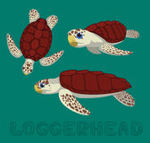 Sea Turtle Loggerhead Cartoon Vector Illustration Royalty Free Stock Photography