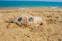 Sea turtle made of sand on the beach, Adriatic Seacoast view. Stock Photo