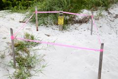 Sea Turtle Nest Protection, Key Biscayne Florida, USA stock images