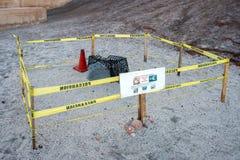 Sea turtle nest on sand Stock Image