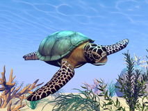 Sea turtle in the sea - 3D render Royalty Free Stock Images