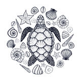 Sea turtle and shells in line art style. Hand drawn vector illustration. Set of ocean elements. Sea turtle and shells in line art style. Hand drawn vector stock illustration