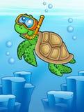 Sea turtle snorkel diver underwater Royalty Free Stock Photos