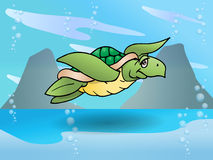 Sea turtle swim on sea Royalty Free Stock Photo