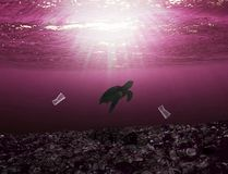 Sea turtle swimming in the ocean with trash all around royalty free stock photography