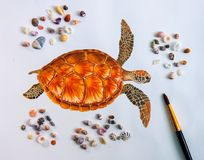 Sea turtle water color drawing on white paper with sea shells photo. stock illustration