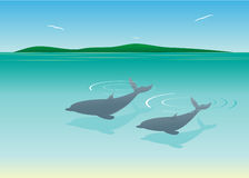 Sea. Two dolphins in water and the island against the sky Stock Photo