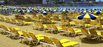 Sea of Umbrellas Royalty Free Stock Images