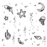 Sea underwater creatures royalty free illustration