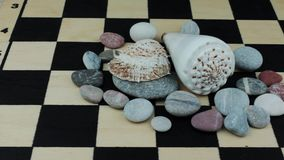 Sea underwater stones on a chessboard. Close up of seashells and stones on a chessboard stock video