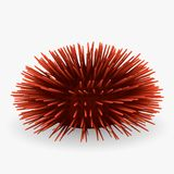 Sea urchin. 3d render of sea urchin Royalty Free Stock Photography