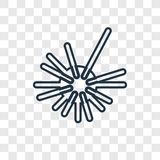 Sea Urchin concept vector linear icon isolated on transparent ba vector illustration