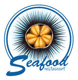 Sea urchin food label on white Royalty Free Stock Image