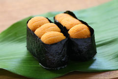 Sea urchin roe, japanese sushi, uni gunkanmaki Stock Photo