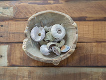 Sea urchins shells. In a bowl on wooden table royalty free stock images