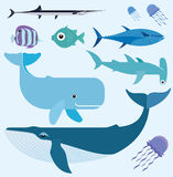 Sea vector set Stock Photography