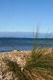 Sea view. View of the adriatic sea and beach in croatia Royalty Free Stock Photography
