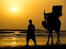 Sea View. A famous camel ride of karachi, pakistan Stock Image