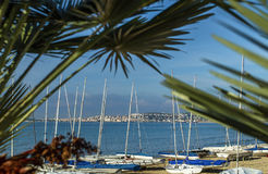 Sea view, beach and Yachts through the Green palm leaves.Mediterranean sea , Gaeta, Italy, Europe. Stock Photo