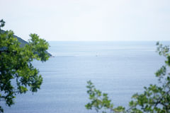 Sea view through the branches of the oak Royalty Free Stock Photos