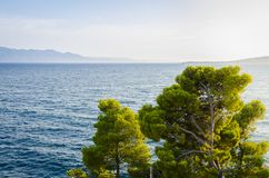Sea view. On the clifs and bay Royalty Free Stock Photo
