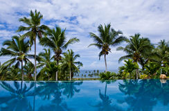 Sea view Infinity Pool. With coconut trees at a resort in Kovalam, Kerala, India Royalty Free Stock Photography