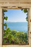 Sea view through an ivy covered window Stock Image