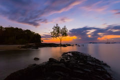 Sea view at Krabi. With a tree on background Royalty Free Stock Image