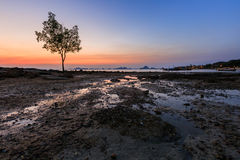 Sea view at Krabi. With a tree on background Stock Photo