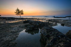 Sea view at Krabi. With a tree on background Royalty Free Stock Photo