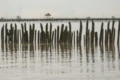 Sea View stock photos