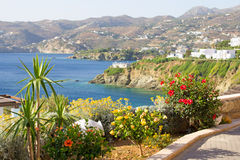 Sea view, palm trees and flowers on Crete island Stock Images