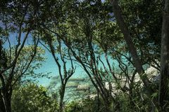 Sea view through rainforest. Round large stones and azure clear water. Beautiful Paradise lagoon. stock photos