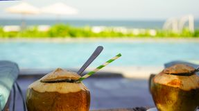 Sea view and swimming pool woth coconuts royalty free stock photos