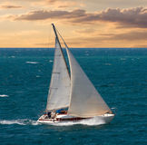 Sea voyage on yacht. Cruising yacht sailing in racing of regatta. Nautical landscape with white sailboat on cloudy sky. Yachting tourism - maritime romantic trip stock photography