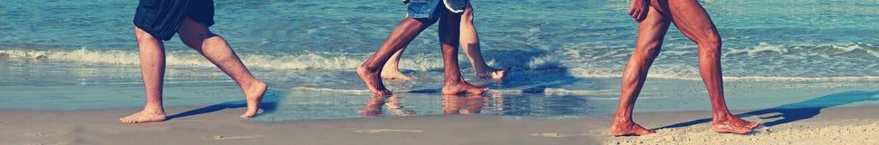 Sea walking Stock Image