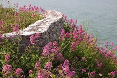 Sea wall on cliffs in Devon Stock Photo