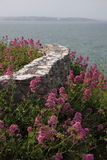 Sea wall on cliffs in Devon Royalty Free Stock Photo