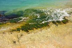 The sea washing over algae-covered rocks Royalty Free Stock Photos