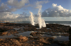 Sea water jets on Cadiz coastline rocks, Spain Royalty Free Stock Photo