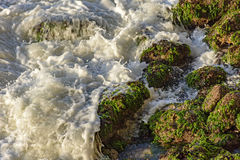Sea water over the stones Royalty Free Stock Image