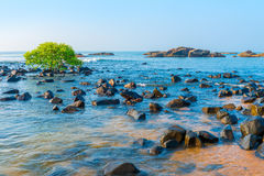 Sea water and scattered stones Stock Images