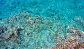 Sea water. See-through sea water, Agios Nikolaos, Crete, Greece Stock Photos