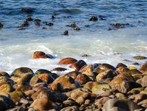 Sea, Water, Shore, Rock royalty free stock images
