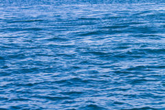 Sea water surface Stock Images