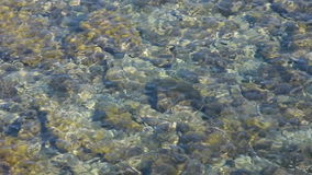 The sea water stock video